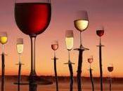 Salon vins Loire 2011