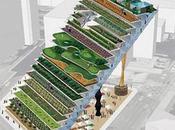 Installer l'agriculture dans villes