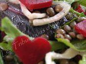 Salade lentilles, fenouil, betterave feuilles