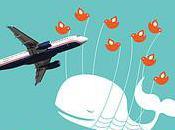 TransBlogExpress France médias sociaux, Twitter chiffres…
