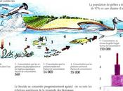 Evolution écosystèmes