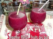 Smoothie Melon Fruits Bois