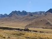 Puno Cuzco