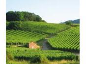 Croisière hédoniste Canal Bourgogne
