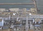 Fukushima, taux radioactivité quatre fois supérieurs limite légale