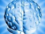 avancées neurosciences bonnes pour storytelling