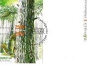 Journée mondiale l'environnement Indonésie