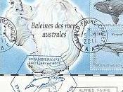 Baleines mers australes lettre TAAF