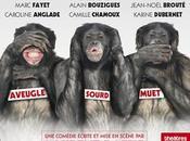 Chronique Bonobos