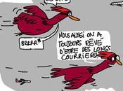 Chicken radar...