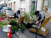 Guerilla gardening quand nature reprend droits
