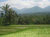 Bali route vers l'est