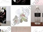 Collections cartes stickers orchidées noirs