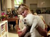 Pourquoi 100% femmes possedent chat sont celibataires
