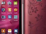 Samsung Wave S5380 Fleur