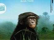 Cinéma Bonobos