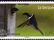 Patrick Hacala Timbre Saint-Pierre Miquelon