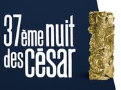 palmarès complet Césars 2012