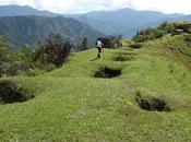Colombie: Assassinés pour poignée d'or