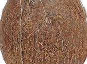 Recette naturelle Masque coco pour cheveux secs ternes