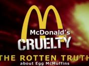 vérité térrifiante l'Egg McMuffins McDonald's