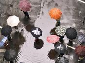 Tanné pluie