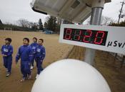 Japon: niveau radioactivité record poissons