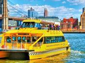 Explorez York depuis l'eau