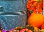 Jardinage bons conseils pour novembre