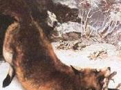 chasses monsieur Courbet