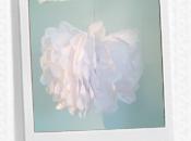 Créer pompons papier soie