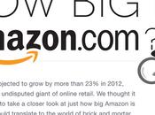 Infographie Amazon 2012