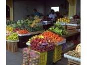 fruits/légumes, votre bouclier santé