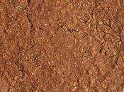 gâteau hyperprotéiné céréales, pommes, d'avoine fèves cacao (sans sucre, sans beurre oeufs)