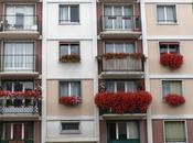 Bulbes printemps planter balcon