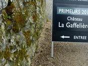 Primeurs 2012 vins Saint Emilion Grappe, chez Thunevin, etc.