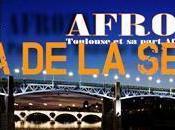 Agenda Afrozap juin 2013