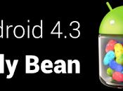 Android dévoilé Google