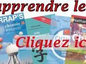 Critique Dictionnaire français-chinois Larousse