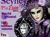 Venise Seyne 2013 programme