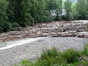 zapping buzz... rivière démonte chat Simon jardine...