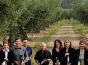 Huiles d'Olive AOP/AOC Vallée Baux-de-Provence