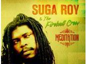 Suga Roy-Meditation-Lalibela Muzik/Fireball Records-2013.