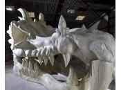 Crâne Dragon Royaume-Uni