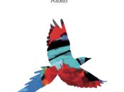 langue oiseaux Gilles Obaldia