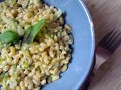 Risotto coquillettes courgette