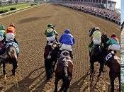 ÉLECTION MONTRÉAL 2013 course chevaux...