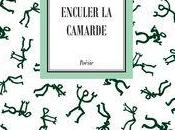 "[note lecture] Lambert Schlechter, ""Enculer camarde"" ""Fracas nuages"", Jean-Pascal Dubost"