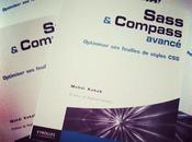 Interview Mehdi Kabab, auteur livre Sass Compass avancé