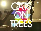 Cats Trees Selena Gomez gros coup coeur